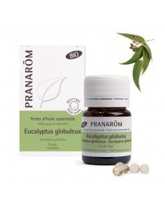PRANAROM Perles d'huile essentielle Eucalyptus globuleux bio