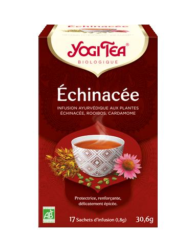 YOGI TEA Echinacée